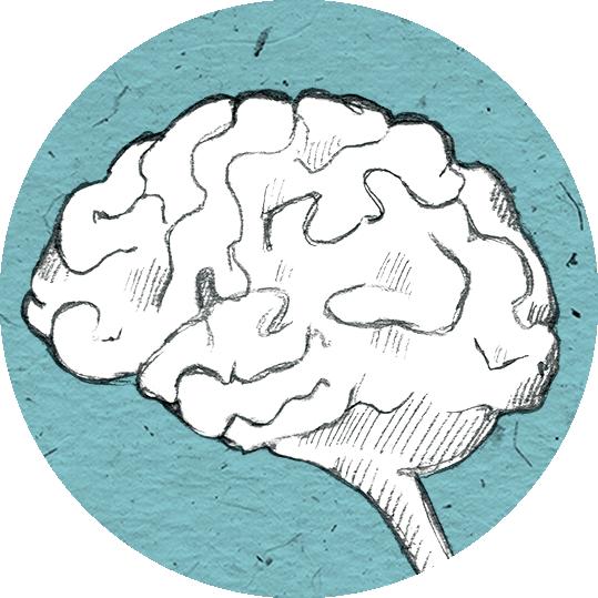 Icon Gehirn